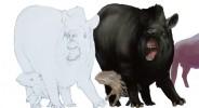 blog tapir painting